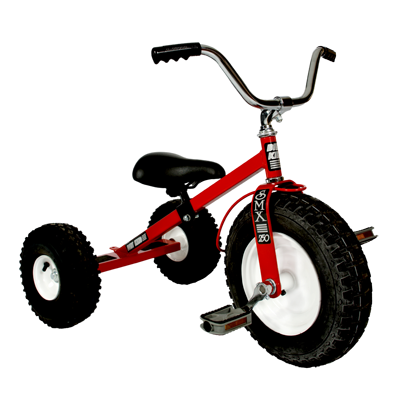 Dirt King Child Tricycle